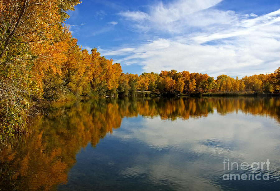 Colorado Photograph - As The Leaves Turn by Bob Hislop