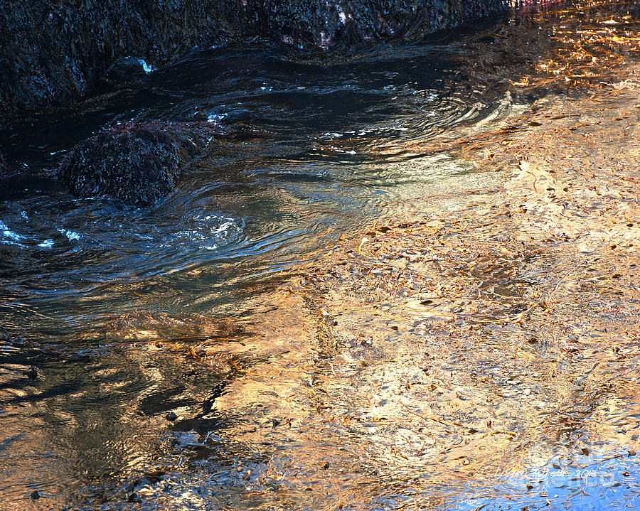 Big Sur Photograph - As The Ocean Wave Swirled It Looked Like Gold by Artist and Photographer Laura Wrede