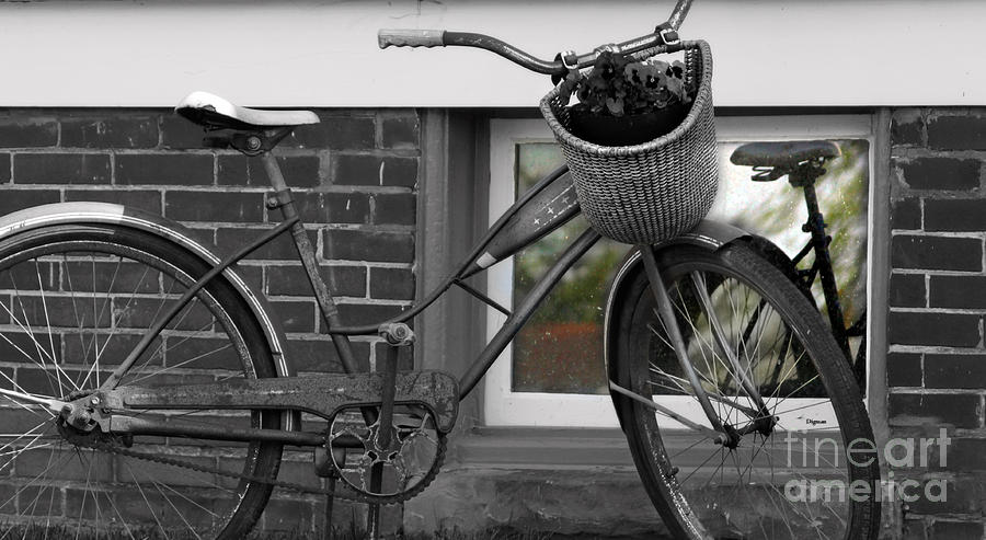 Bicycle Photograph - As Time Cycles Past by Steven Digman