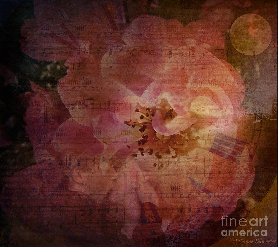 Roses Digital Art - As Time Goes By by Lianne Schneider