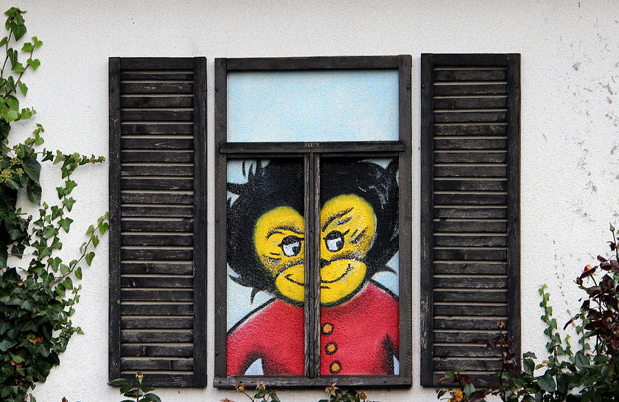 Ape Photograph - As You Look Into A Window Into It So It Looks Out by Heike Hultsch