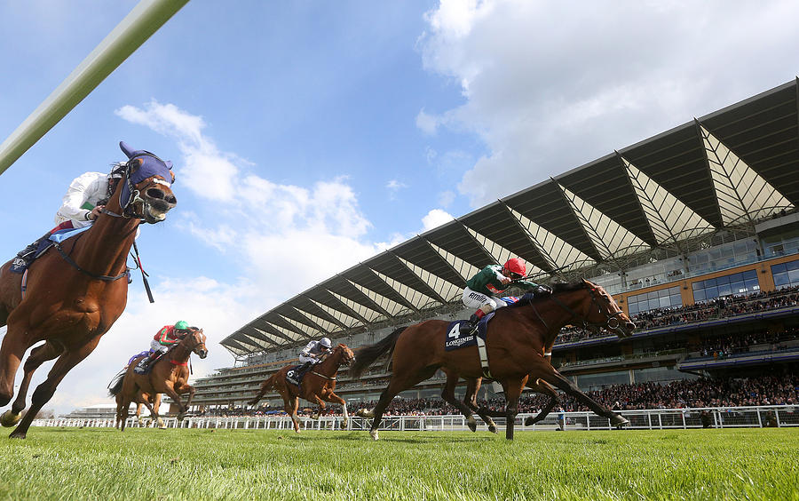 Ascot Races Photograph by Charlie Crowhurst