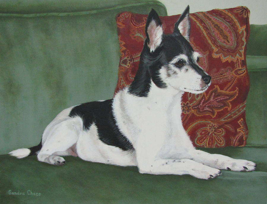 Dog Painting - Ashley On Her Sofa by Sandra Chase