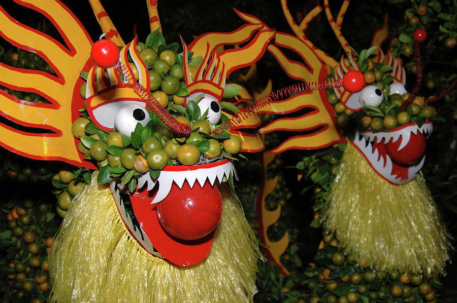 Asia Photograph - Asia, Vietnam Nagas Made With Oranges by Kevin Oke