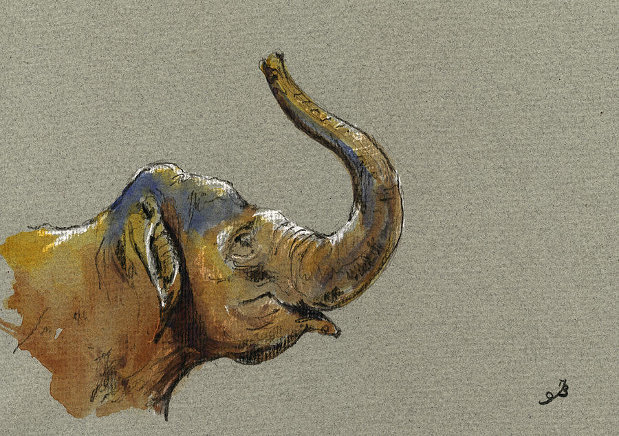 Drawing Painting - Asiatic Elephant Head by Juan  Bosco