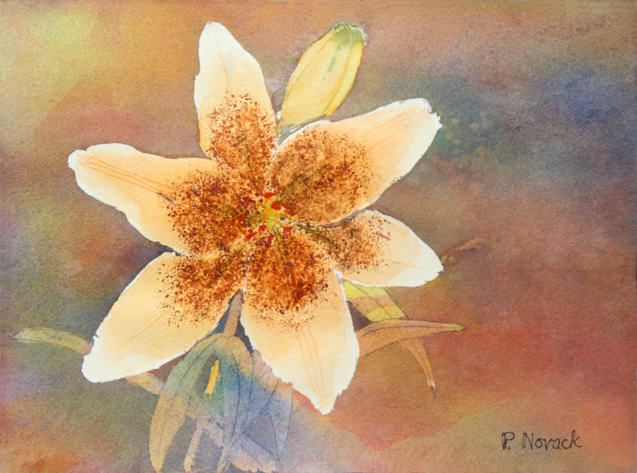 Lily Painting - Asiatic Lily by Patricia Novack
