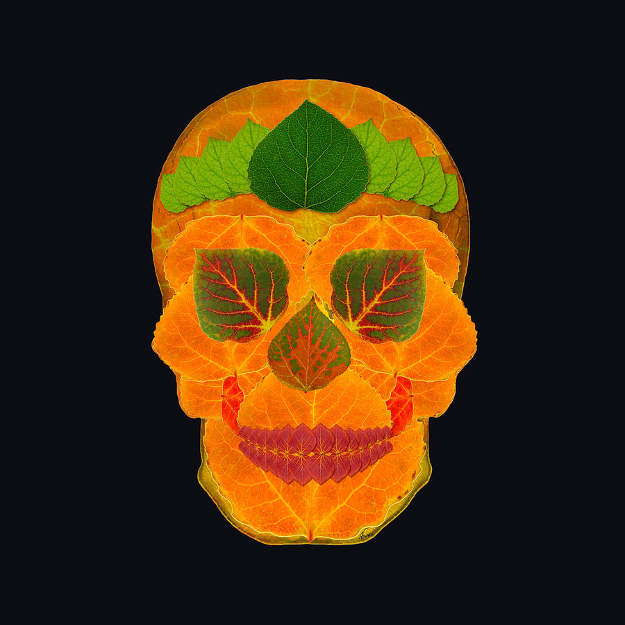 Aspen Leaf Digital Art - Aspen Leaf Skull 3 Black by Agustin Goba