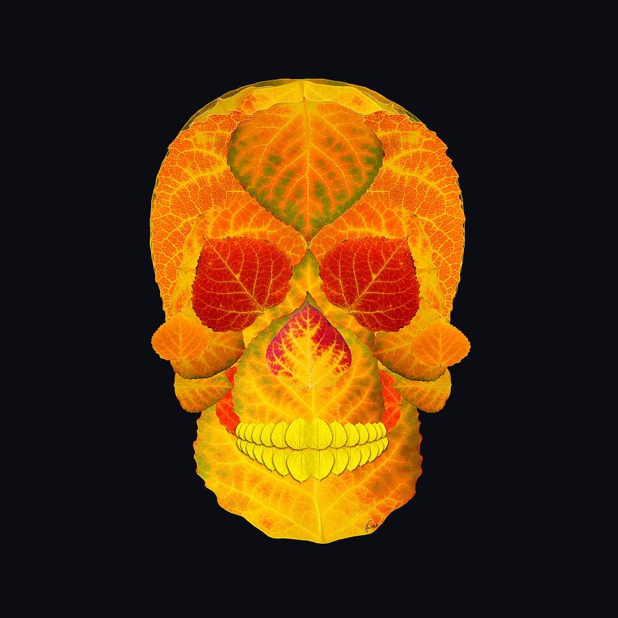 Aspen Leaf Digital Art - Aspen Leaf Skull 6 Black by Agustin Goba