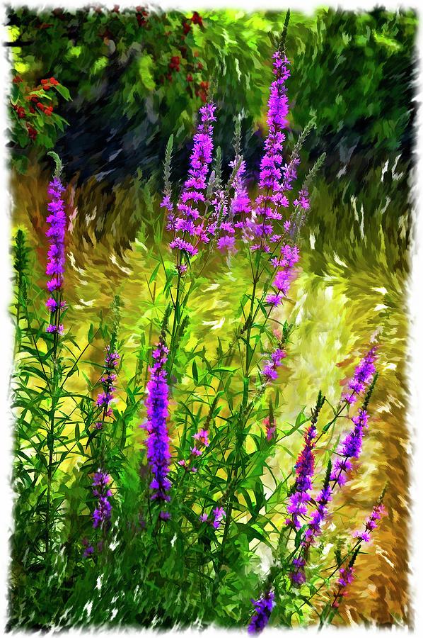 Wildflower Photograph - Aspirations Vignette by Steve Harrington