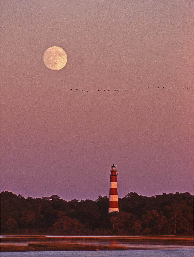 Lighthouse Photograph - Assateague Lighthouse Va by Skip Willits
