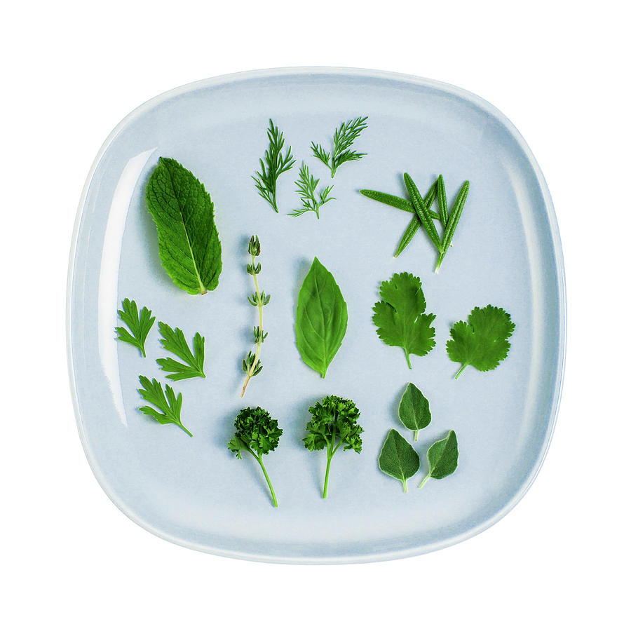 Assorted Fresh Herb Leaves On Blue Plate Photograph by Creative Crop