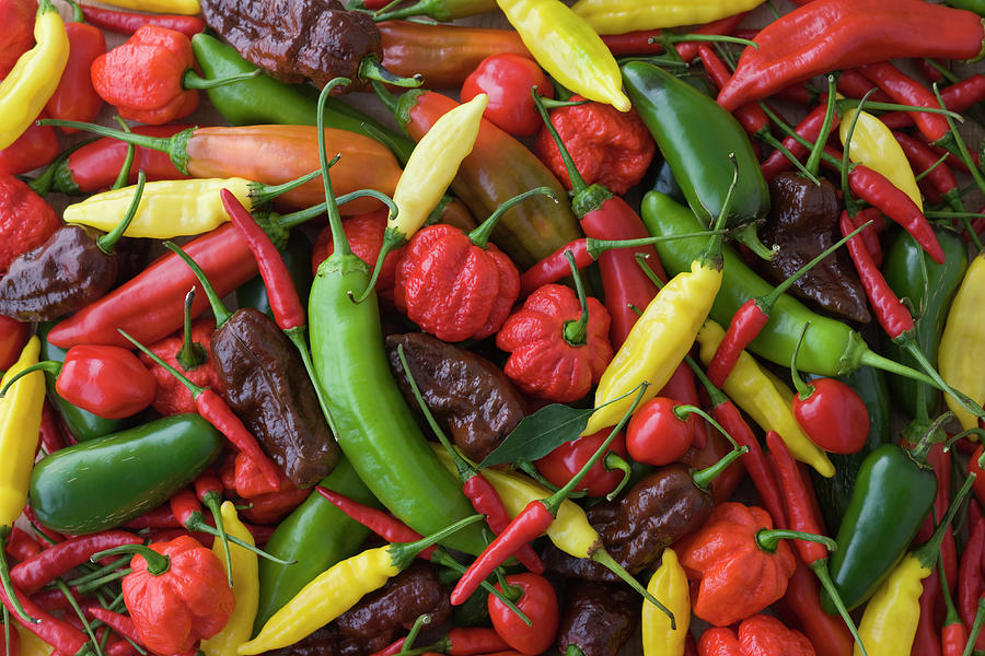 Assorted Multicolored Chili Pepper Photograph by Mixa