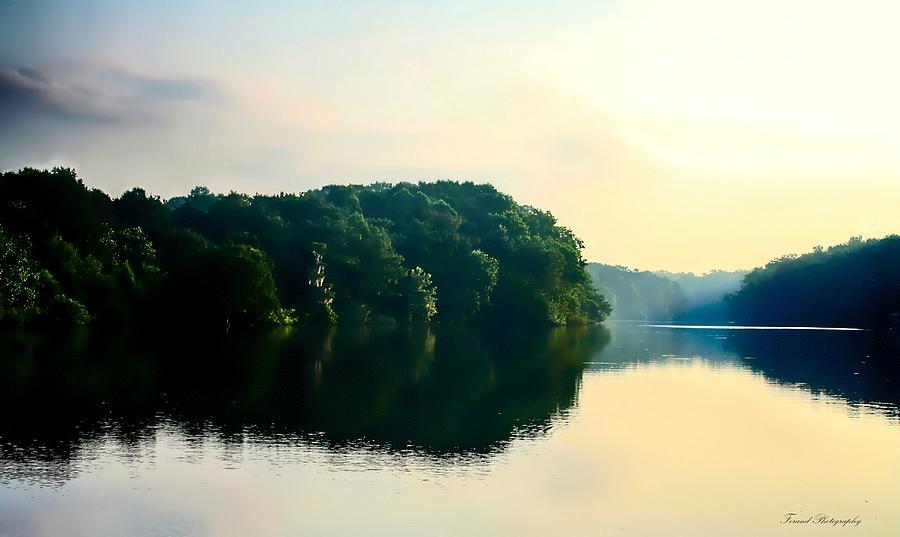 Apalachicola River Photograph - At Dawn  by Debra Forand