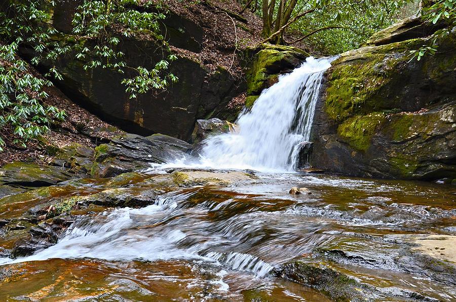 Waterfall Photograph - At Dodd Creek by Susan Leggett