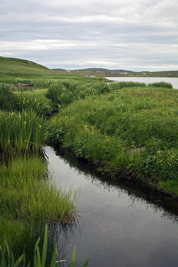 Water Photograph - At Flugarth by Steve Watson