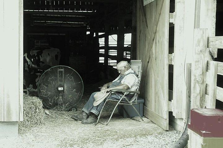 Rest Photograph - At Rest by Elizabeth King