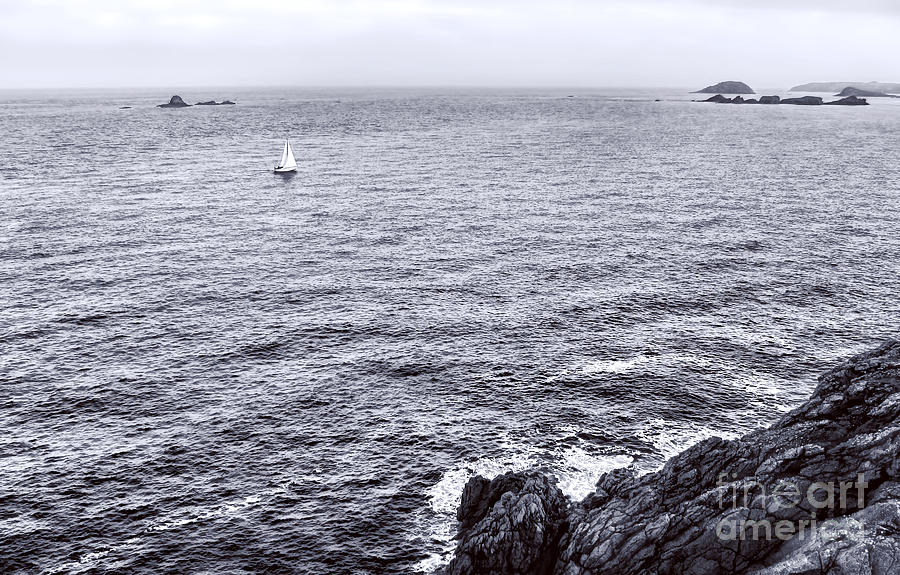 France Photograph - At Sea by Olivier Le Queinec