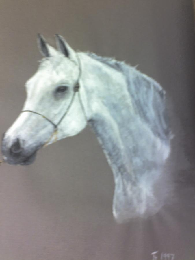 Stud Horse Painting - At Stud by Stephen Thomson