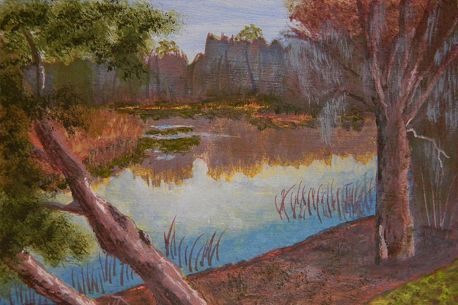 Sky Painting - At The Bend On The Ocklawaha  by Warren Thompson