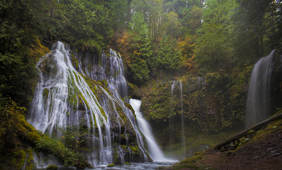 Panther Creek Falls Photograph - At The Bottom Of Panther Creek Falls by David Gn