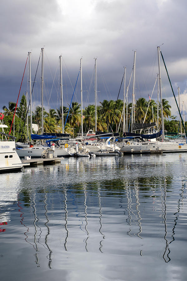 Sail Photograph - At The Marina by    Michael Glenn