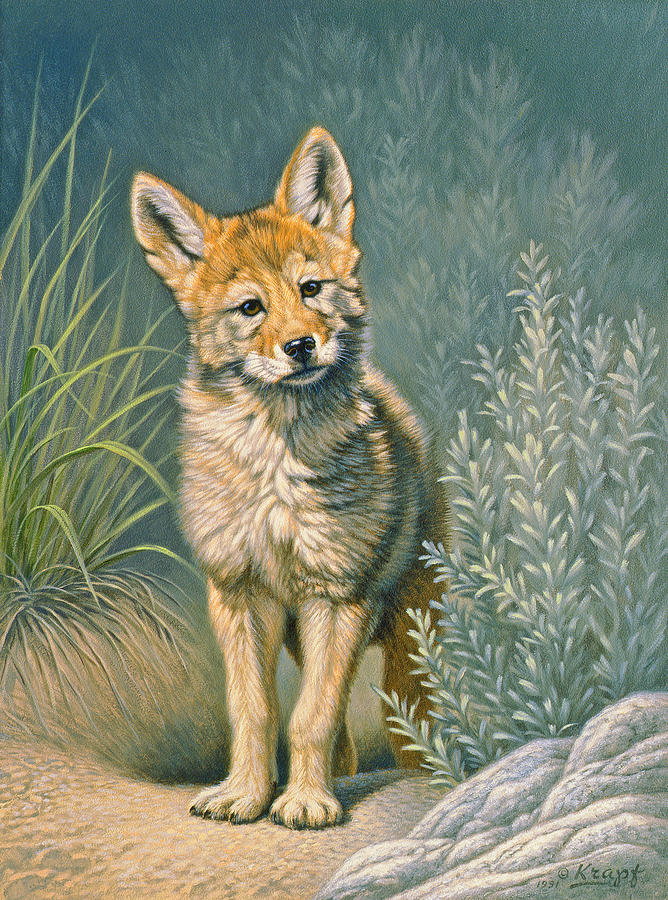 Wildlife Painting - At The Play Den by Paul Krapf