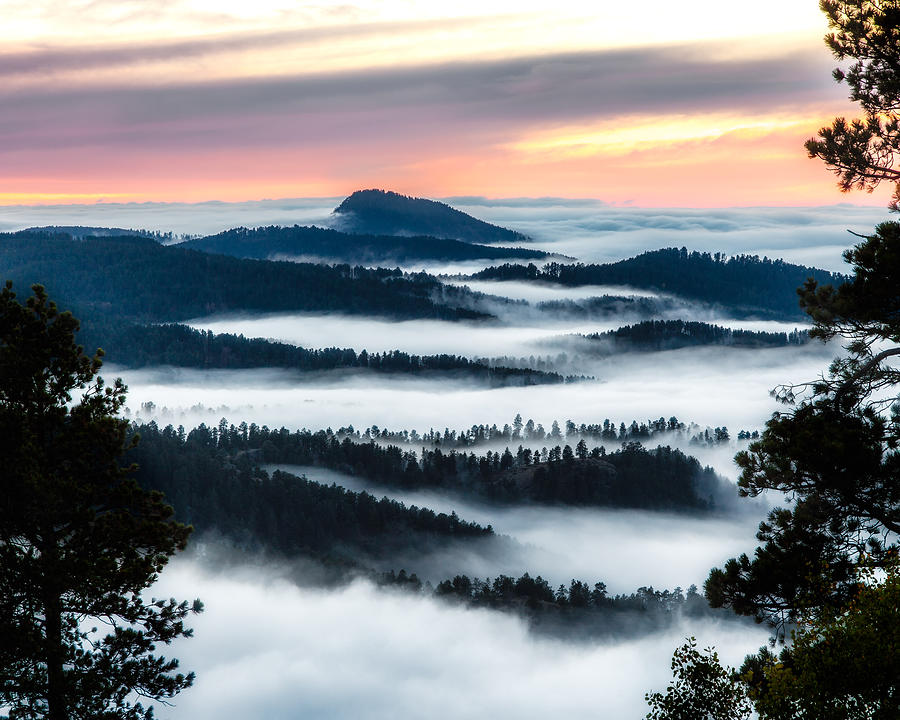 Black Hills Photograph - At The Top Of The World by David Wynia