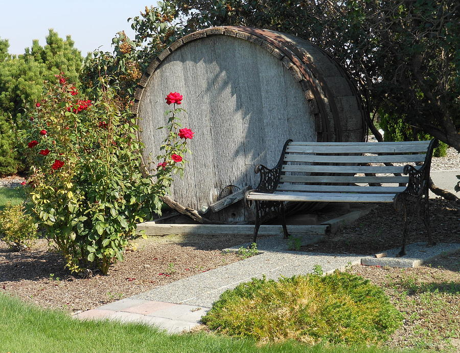 Winery Photograph - At The Winery by Kay Gilley