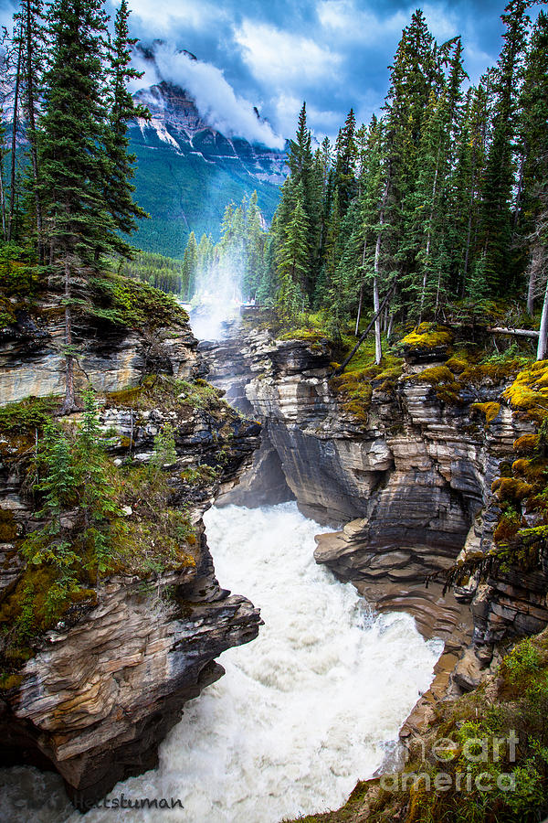 Falls Photograph - Athabasca Falls by Chris Heitstuman