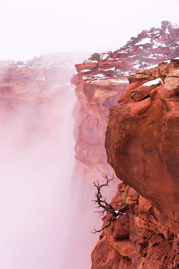 Canyonlands Photograph - Atop Canyonlands by Chad Dutson
