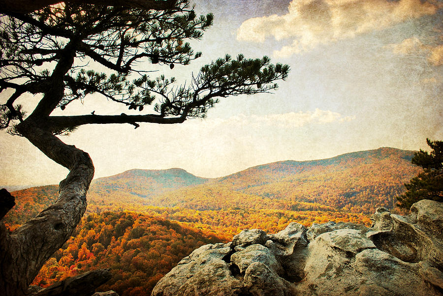 Hanging Rock Photograph - Atop The Rock by Kelly Nowak