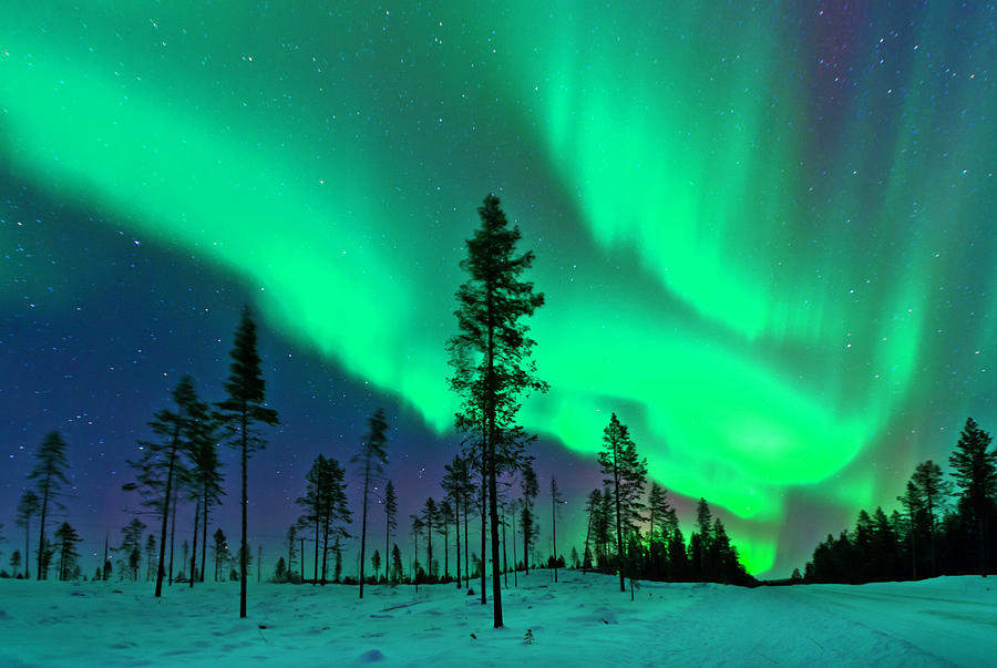 Aurora Borealis  Northern Lights Sweden Photograph by Dave Moorhouse