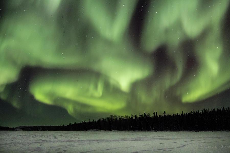 Aurora Borealis Over Vee Lake Photograph by Valerie Ann Pond