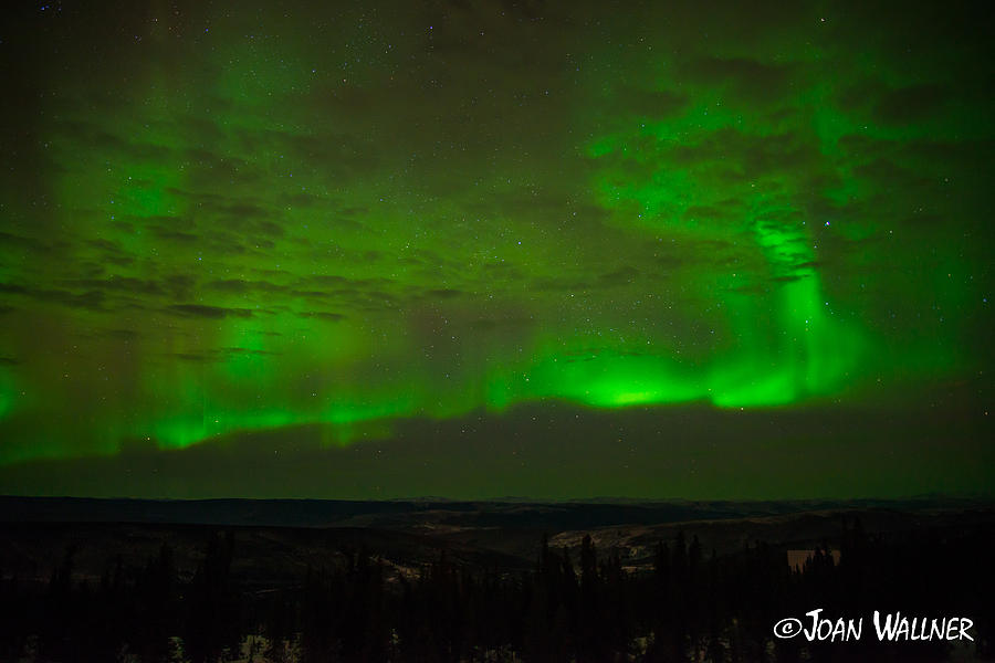Alaska Photograph - Aurora Flare with clouds by Joan Wallner