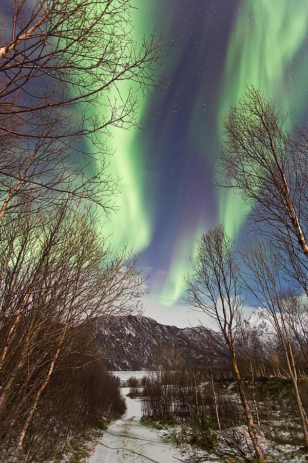 Norway Photograph - Aurora Road by Frank Olsen