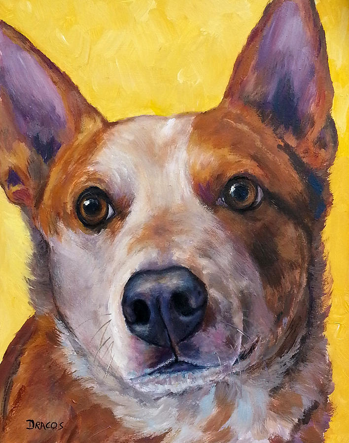 Red Heeler Painting - Australian Cattle Dog Red Heeler On Yellow by Dottie Dracos