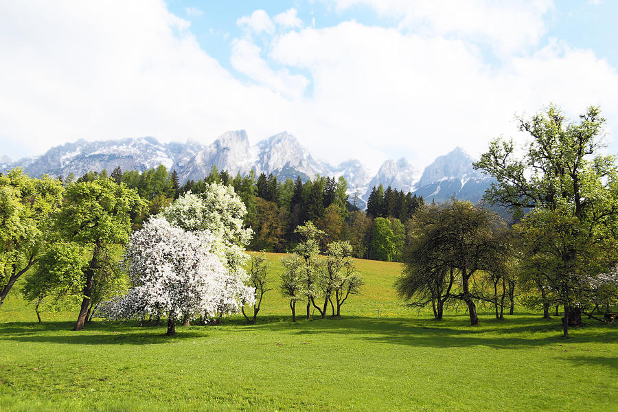 Austria Photograph - Austrian Landscape In Spring by Brooke T Ryan