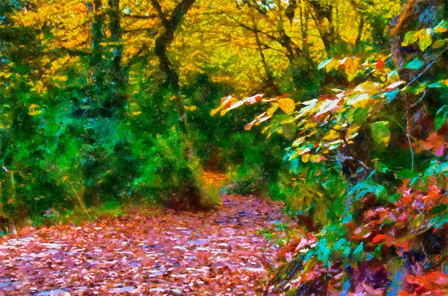 Autumn Photograph - Autumn - 6 by Okan YILMAZ