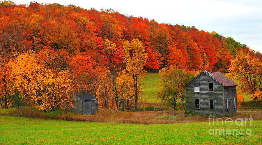 House Photograph - Autumn Abandoned by Terri Gostola