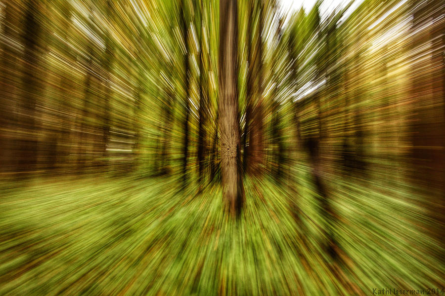 Landscapes Photograph - Autumn Abstract by Kathi Isserman