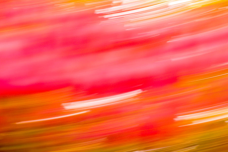 Autumn Photograph - Autumn Abstract by Shane Holsclaw