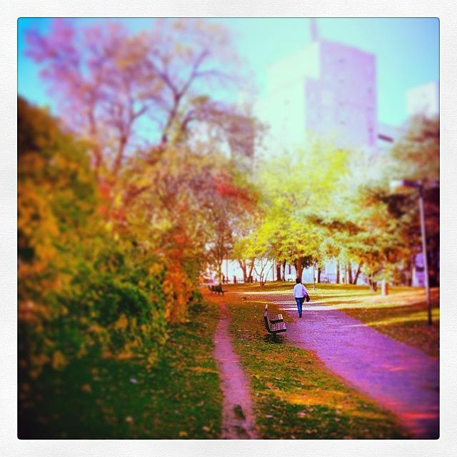 Minneapolis Photograph - Autumn Along The Mississippi River by Heidi Hermes