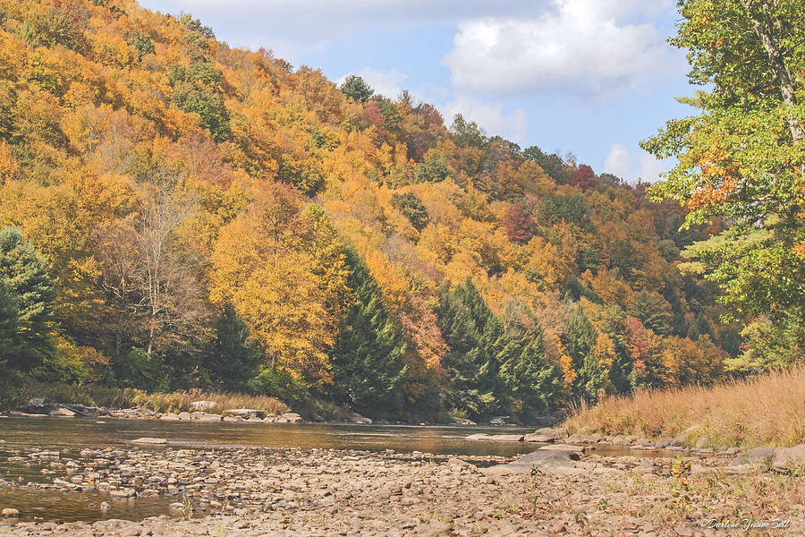 Clarion River Photograph - Autumn Along The River by Darlene Bell