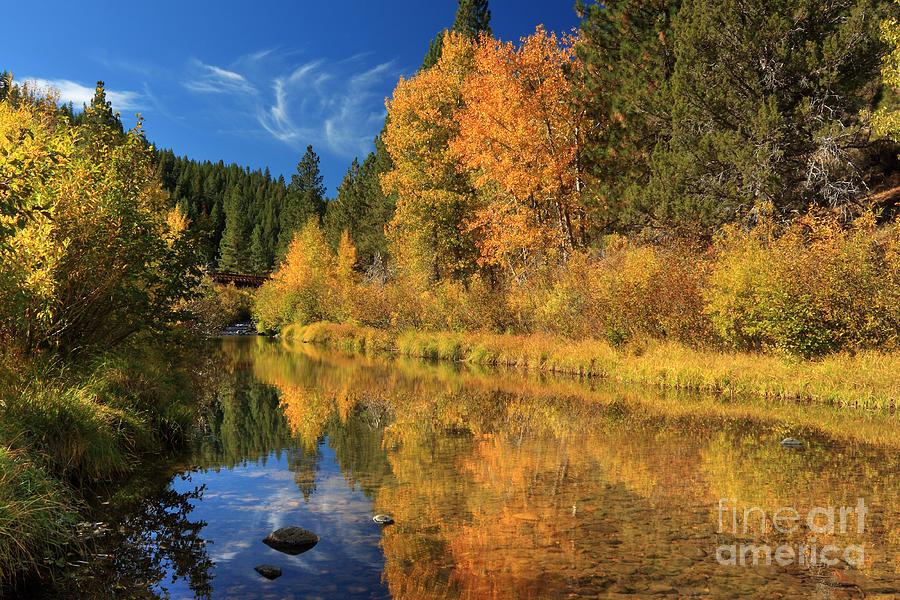 Autumn Along The Susan River Photograph