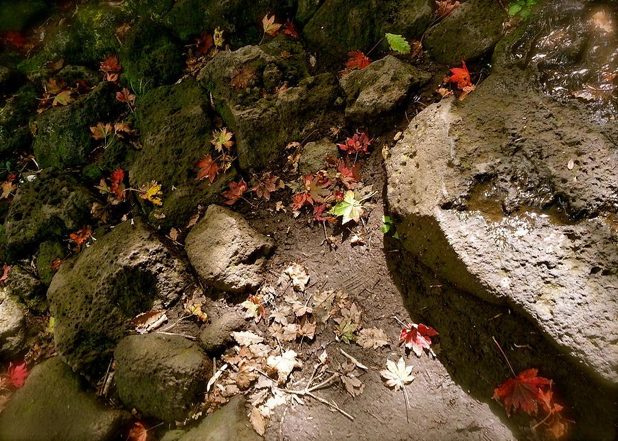 Autumn Leaves Photograph - Autumn At Hallasan by Yen