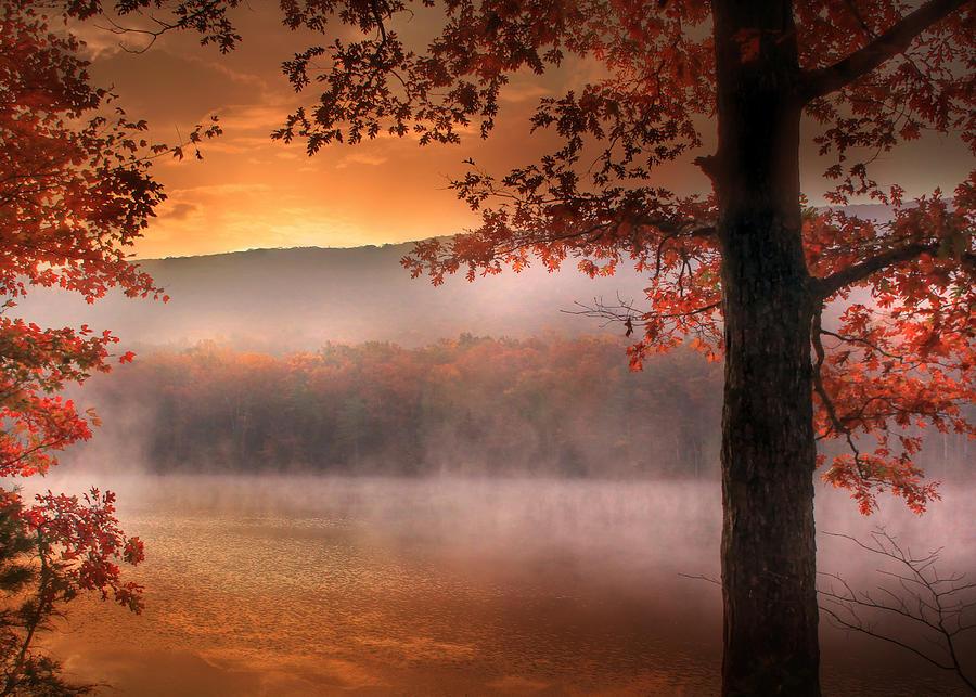 Landscape Photograph - Autumn Atmosphere by Lori Deiter