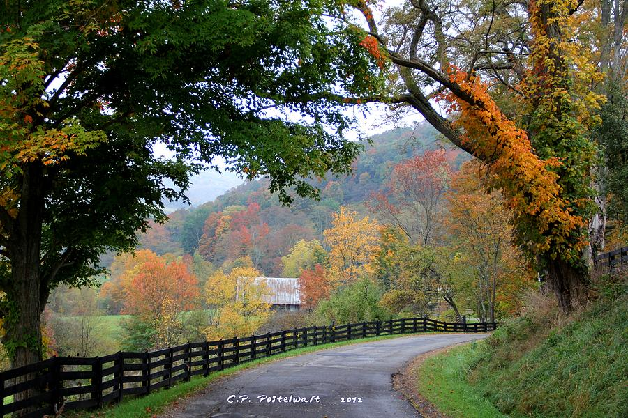 Nature Photograph - Autumn Beauty Around The Bend by Carolyn Postelwait
