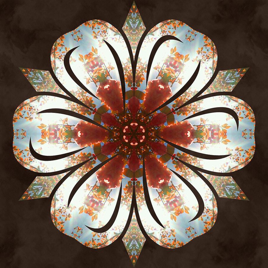 Sacredlife Mandalas Photograph - Autumn Blooming by Derek Gedney