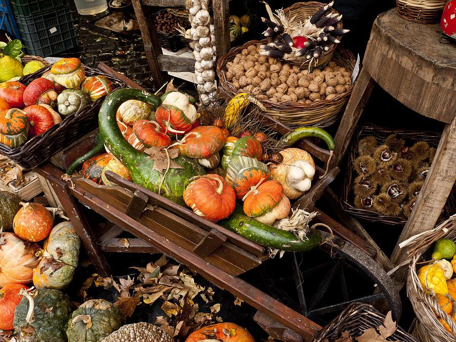 Autumn Photograph - Autumn Bounty by Rae Tucker