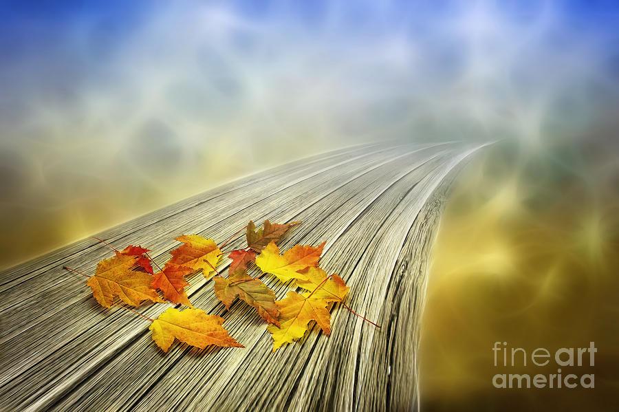 Artist Photograph - Autumn Bridge by Veikko Suikkanen